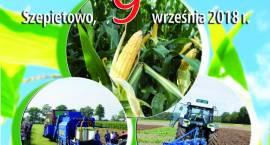 Podlaski Dzień Kukurydzy w Szepietowie