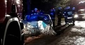 Samochód uderzył w drzewo [FOTO]