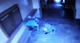 Młodzi złodzieje okradli kościół [FOTO]