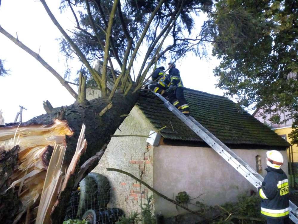 STRAŻ POŻARNA, Piła burzy Kilkanaście interwencji strażaków - zdjęcie, fotografia