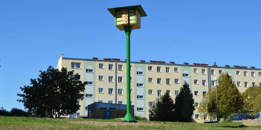 BUDŻET OBYWATELSKI, Wieże czekają jerzyki - zdjęcie, fotografia