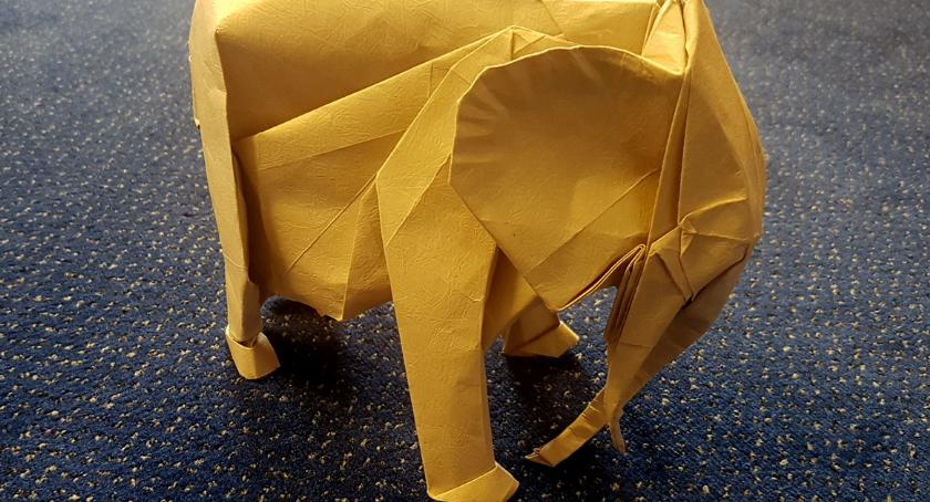 """WYDARZENIA, papieru weekend """"Origami Gwdą"""" - zdjęcie, fotografia"""