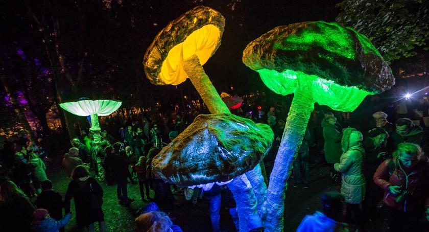 WYDARZENIA, Światło dźwięk głównej Festiwal Teatrów Światła [ZDJĘCIA] - zdjęcie, fotografia