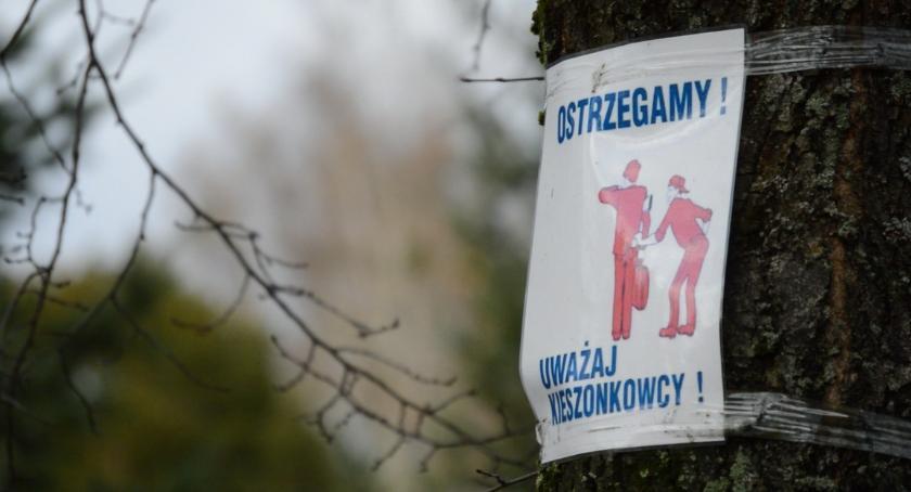 WSZYSTKICH ŚWIĘTYCH 2018, cmentarzu uważaj złodziei - zdjęcie, fotografia