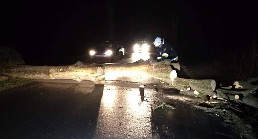 STRAŻ POŻARNA, Połamane drzewa prądu Strażackie agregaty ratowały życie - zdjęcie, fotografia