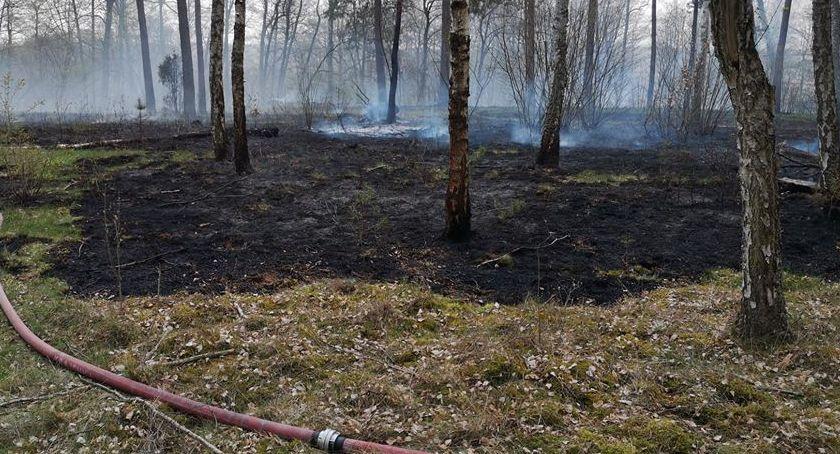 STRAŻ POŻARNA, Seria pożarów wichury Pracowity dzień strażaków - zdjęcie, fotografia