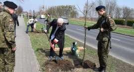 Dęby Pamięci dla ofiar Zbrodni Katyńskiej [ZDJĘCIA]