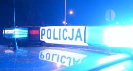 Seria zatrzymań. 35 osób w rękach policji