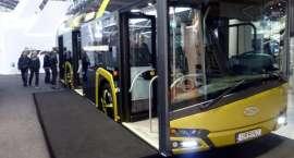 Bezpłatny autobus w Pile. MZK testuje hybrydę