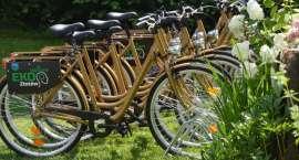 Złote rowery za kilka złotych. Wypożyczalnia w Złotowie