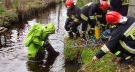 Chemikalia wyciekły do rzeki [ZDJĘCIA]