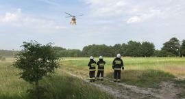 Ranny rowerzysta przetransportowany śmigłowcem do szpitala w Pile [ZDJĘCIA]
