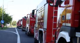 Strażacy z Piły i regionu pomagają gasić pożary lasów w Szwecji [ZDJĘCIA]