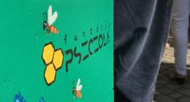 Fundacja Pszczoła chce stworzyć w Pile dom opieki dla osób starszych [VIDEO]