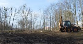 Wycinka w parku przy ul. Ceglanej. Dlaczego usunięto drzewa? [VIDEO]