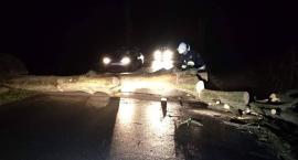 Połamane drzewa i brak prądu. Strażackie agregaty ratowały życie