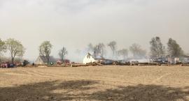 Pożar tartaku w Brzostowie [VIDEO]