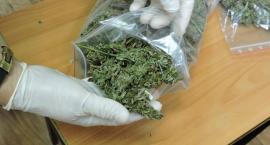 Wpadł 28-latek z narkotykami. Miał 190 gramów marihuany