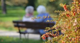 Jesień w Parku Miejskim w Pile [ZDJĘCIA]