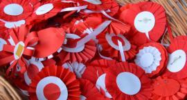 Biało-czerwony parkrun na Święto Niepodległości w Pile
