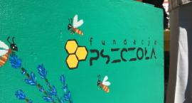 Malujemy ule. Pomóż stworzyć miejską pasiekę w Pile