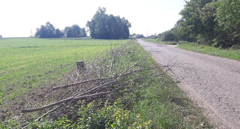 W aktualnym numerze PGP, Niedokończone wiosenne porządki drogowe - zdjęcie, fotografia