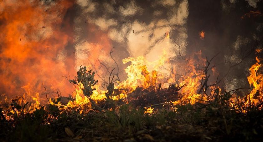 Straż Pożarna, Pożar Gnojnie - zdjęcie, fotografia