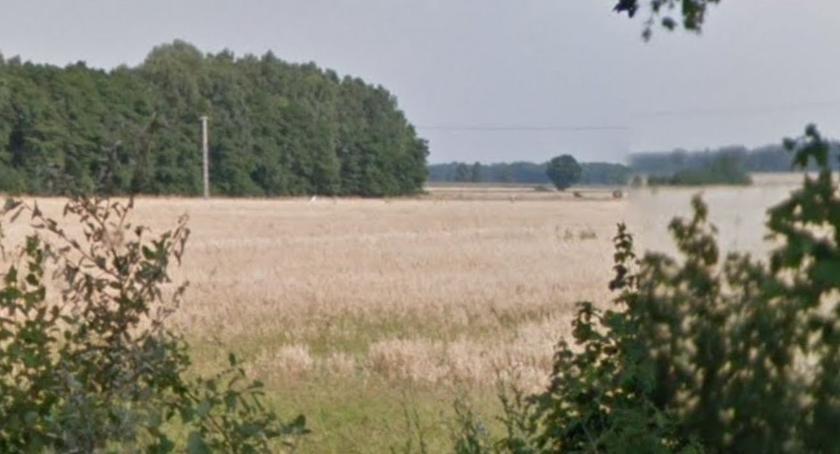 W aktualnym numerze PGP, gminie Winnica zaleziono zwłoki - zdjęcie, fotografia