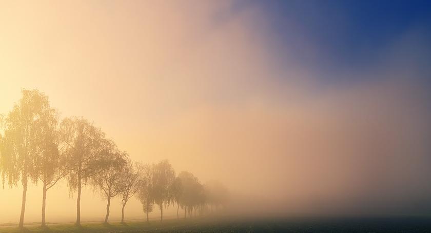Komunikaty, gęste mgły - zdjęcie, fotografia