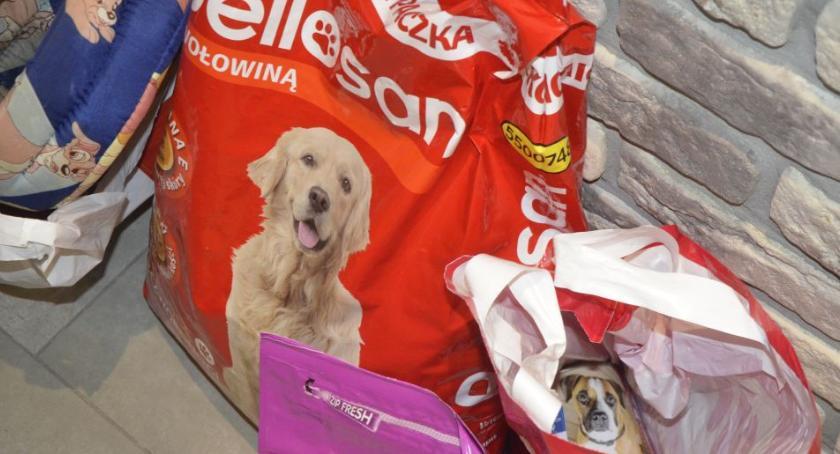 Zwierzaki, Kolejne kilogramy karmy schroniska Pawłowie - zdjęcie, fotografia