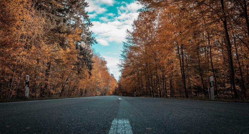 Komunikaty, Jesień drodze - zdjęcie, fotografia
