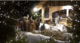 Bożonarodzeniowy żłóbek w Bazylice