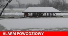 Wysoka woda na terenie Domu Polonii