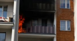 Pożar na Pana Tadeusza