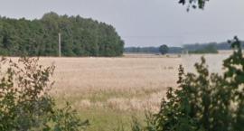 W gminie Winnica zaleziono zwłoki
