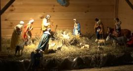 Bożonarodzeniowe żłóbki w pułtuskich kościołach