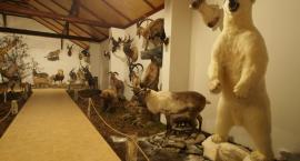 Galeria myśliwska w Gotardach