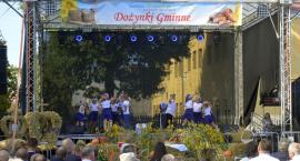 Święto plonów w gminie Winnica – fotogaleria