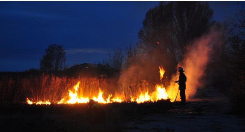 Inne Powiat, pożarom traw! Jakie wypalanie - zdjęcie, fotografia