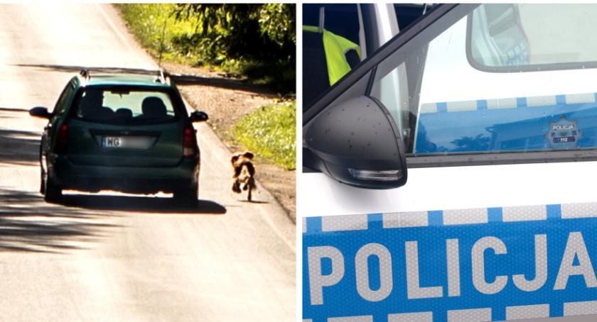 Sprawy kryminalne , Wyrzucił samochodu odjechał Internauci domagają surowej - zdjęcie, fotografia