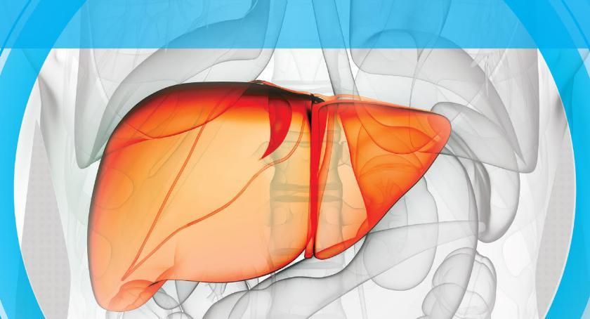 Zakażenie wirusem HCV – Bezpłatne badania w Garwolinie