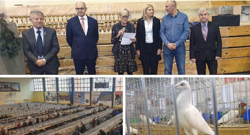 Oficjalnie otwarto IX wystawę Gołębi w Garwolinie