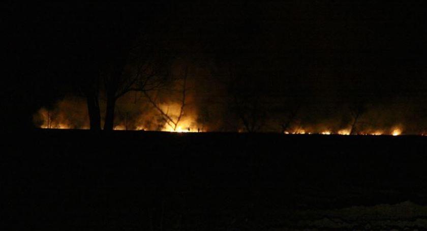 Pożary - interwencje straży, pożarów tydzień! wypalanie - zdjęcie, fotografia