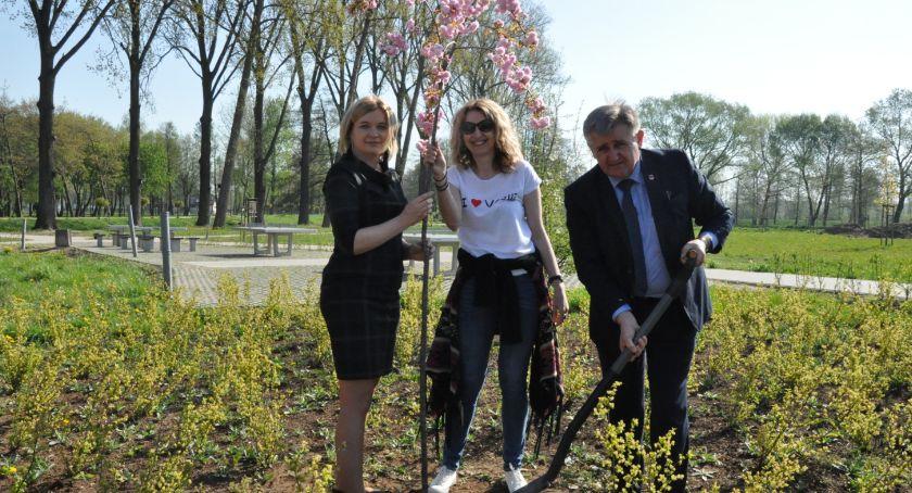 Inne Miejskie, Zielony Rekord Polski każdy może włączyć akcji! - zdjęcie, fotografia