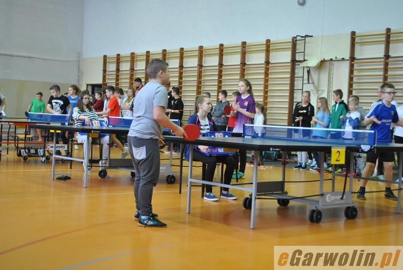 Tenis, Najlepsi tenisiści stołowi gminie - zdjęcie, fotografia