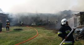 Pożar budynków gospodarczych w Żabieńcu (video i zdjęcia)