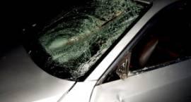 Kolizje na DK 17: Jeden kierowca zasnął, drugi wjechał w stado dzików