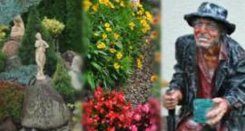 Garwolin: Masz piękny ogród lub balkon? Zgłoś się do konkursu!