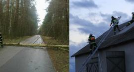 Brak prądu, połamane drzewa, podtopienia – wichura w powiecie Garwolin
