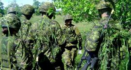 Kwalifikacja wojskowa – terminy stawiennictwa dla mieszkańców miast i gmin